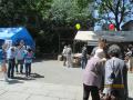 5/5堺・開口神社五月祭での署名活動